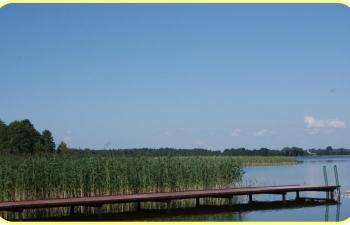 MOSS OMEGA - Agrykola Mazury